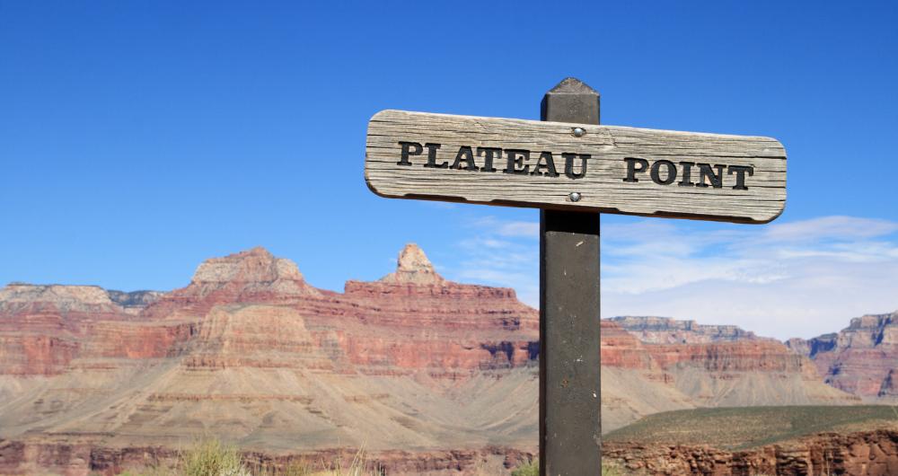 Plateaus Got You Stuck?